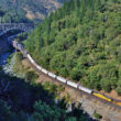 The State of California is attempting to impose local taxes on the carriage of dangerous goods by rail.  A Union Pacific mixed freight at Pulga in California's Feather River Canyon in July of 2016.  Image © 7/2016 by Nikki Burgess; all rights reserved.