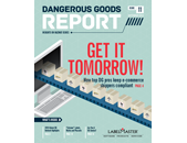 DG Report Vol. 11